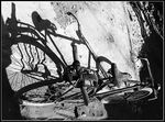 Title: Shady bicycle ?