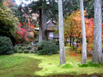 Title: Garden in the autumnCanon IXY DIGITAL 900 IS