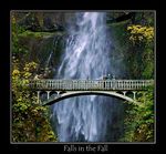 Title: Falls in the FallNIKON D 70