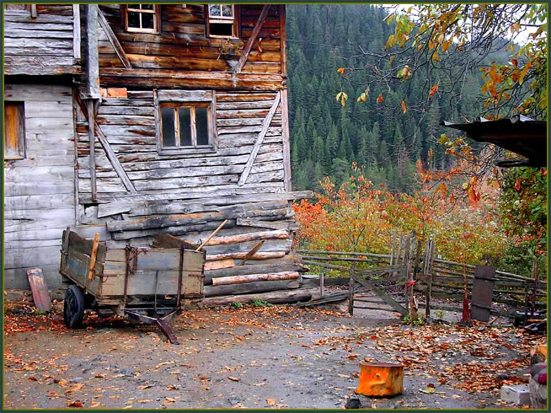 Autumn and house