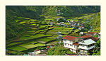 Title: Barlig Terraces 2007Nikon D70