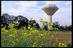 Title: Water tower 4