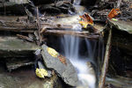 Title: Babbling Brook Camera: Canon EOS D60