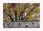 Title: Fortress Wall and Autumn Leaves