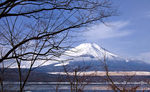 Title: Fujisan in Winter