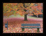 Title: Autumn Rest