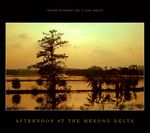 Title: Afternoon at the Mekong delta