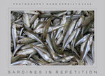 Title: Sardines in repetition