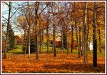 Title: autumn_and_altinpark