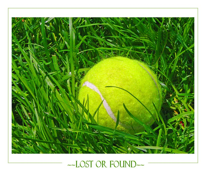~~Lost or Found~~
