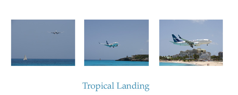 Tropical Landing....For Els