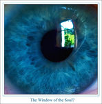 Title: The Window of the Soul?Canon EOS 20D