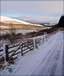 Title: A Snowy Road in the Scottish Borders