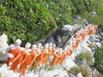 Title: A movement of monks