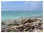 Title: San Andres