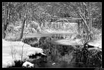 Title: Reflection of Winter Camera: Canon EOS Rebel 400D XTi