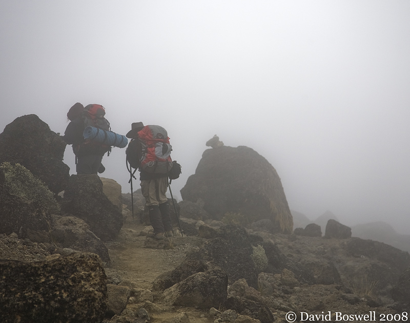 Backpackers in the Mist