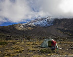 Title: At Barranco Camp, Kilimanjaro