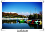 Title: �[ Paddle Boats ]�