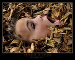 Title: Drowning in Autumn :)Fuji Finepix S7000