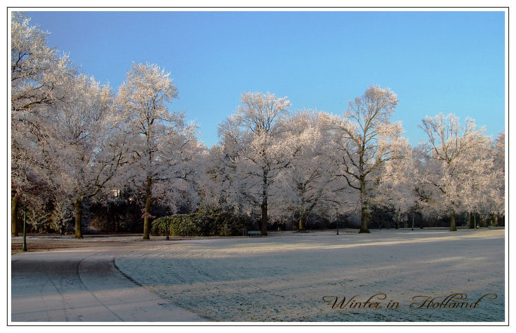 Winter in Holland (2)