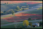Title: L�Umbria in autunno