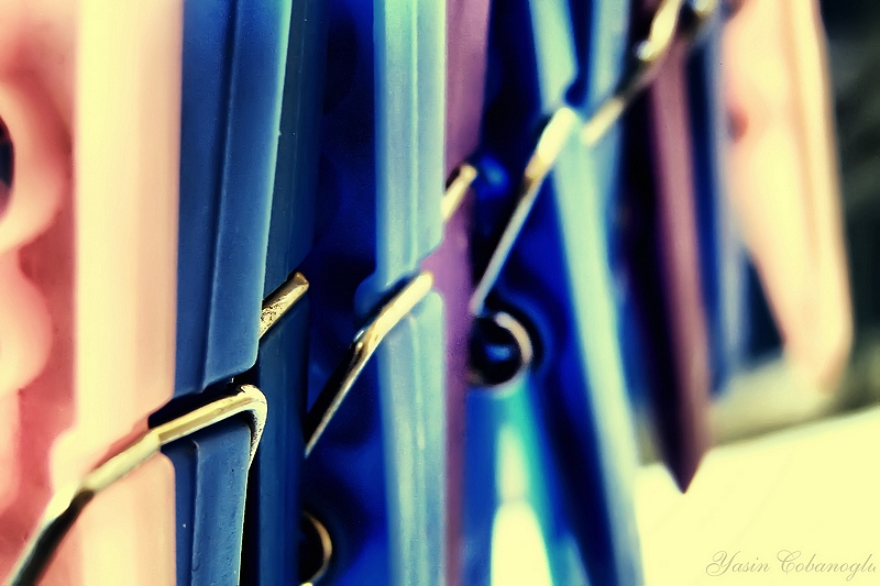 Clothes Pin's