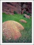 Title: Roxborough BouldersGraflex Century Graphic 2x3
