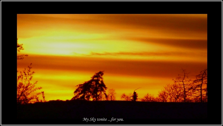 *my sky ..for you*