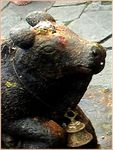Title: Nandi- The Bull