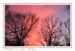 Title: Pink in the Sky