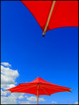 Title: Red Umbrellas