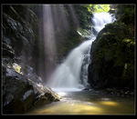 Title: Waterfall in the forestCanon EOS 5D