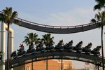 Title: a roller coaster