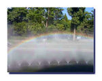 Title: a rainbow in the spray