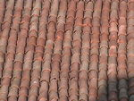Title: Roof