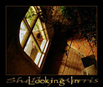 Title: Looking In