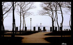 Title: From Ellis to Liberty IslandFujica ST801