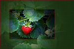 Title: Strawberry in a Photoshop BasketCanon  Rebel XTi 400D