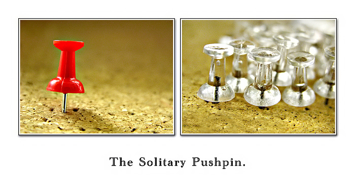 :: The Solitary Pushpin ::