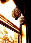 Title: lanterns.Nikon Coolpix 3200