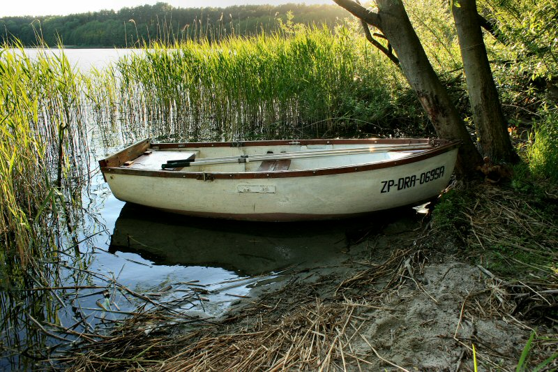The angler boat