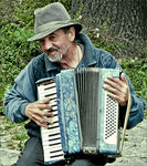 Title: AccordionistPanasonic DMC-FZ18