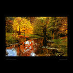 Title: Autumn in Colors