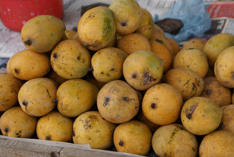 Mangoes from India