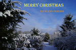 Title: Merry Christmas from DuPont WASony Alpha 100 Digital SLR