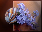 Title: Blooming Snail