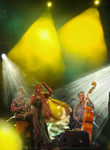 Title: Womad Festival