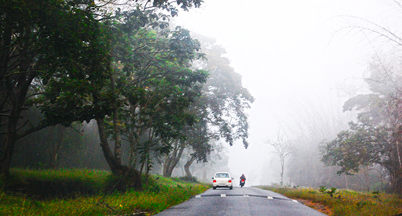 The Road to Ooty