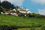 Title: Ooty Hill Housenikon d40